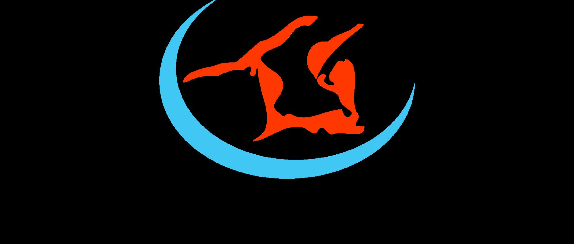 logo geojr